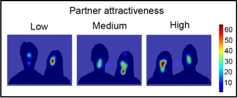 partner attractiveness scan
